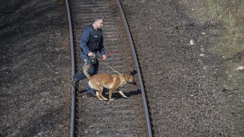 Ein Hundeführer läuft mit seinem Spregstoffhund über die Gleise.