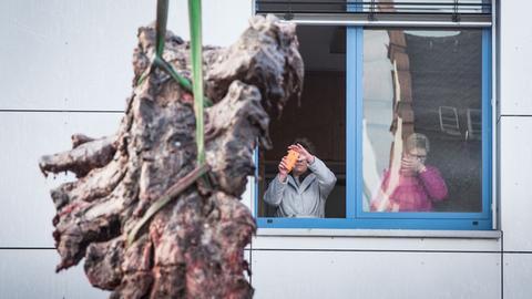 Zuschauerinnen fotgrafieren Wirbelstück des toten Pottwals.