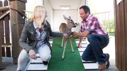 """Die Pflegefamilie und das Rehkitz """"Bambi""""."""