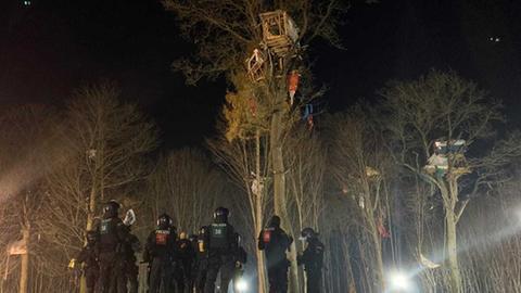 Polizisten stehen in voller Montur vor einem Baumhaus.