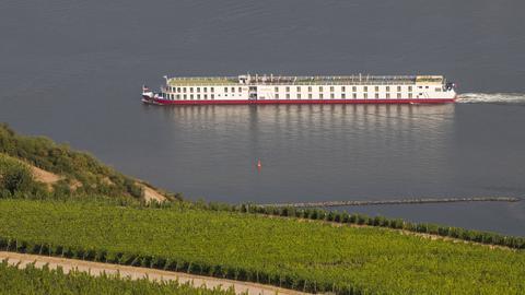 Der Rhein  bei Rüdesheim