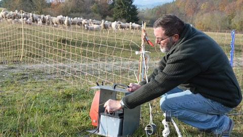 Schäfer Anton Göbel stelle einen Elektroschutzzaun ein