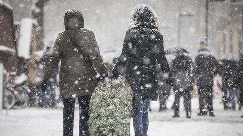 Im dichten Schneetreiben schleifen zwei Leute einen verpackten Weihnachtsbaum nach Hause.