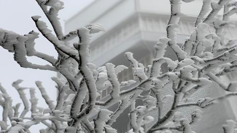 Schnee auf dem Feldberg im Taunus