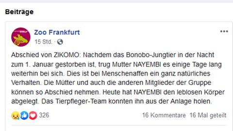 """Screenshot von der Facebook-Seite """"Zoo Frankfurt"""""""