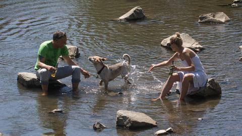 Pärchen sitzt mit Hund im Flussbecken