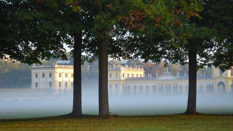 Nebel über Wiese vor Gebäude