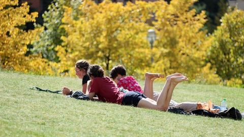 Jugendliche liegen auf einer Wiese in der Sonne.