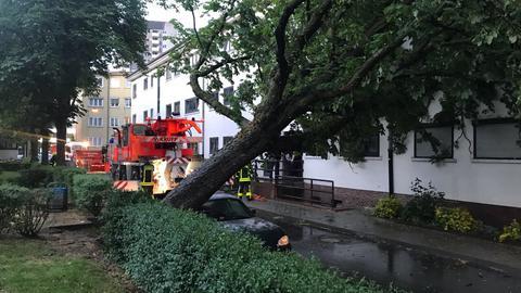 Starker Wind hat den Baum auf ein Haus in Frankfurt geworfen.