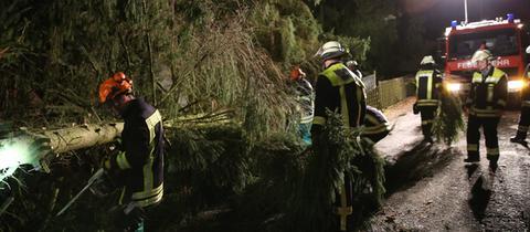 Am Hohen Tor in Homberg (Ohm) stürzte eine Tanne auf die Straße, die Freiwillige Feuerwehr rückte mit Motorkettensägen an.