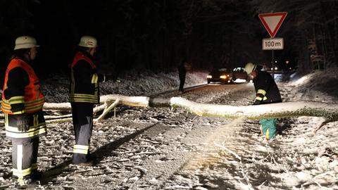 Ein umgestürzter Baum blockiert eine Landstraße bei Feldatal.