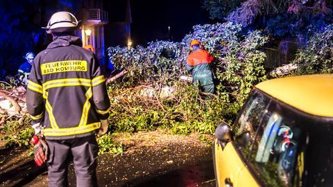 In Bad Homburg riss der Sturm einen Baum um.