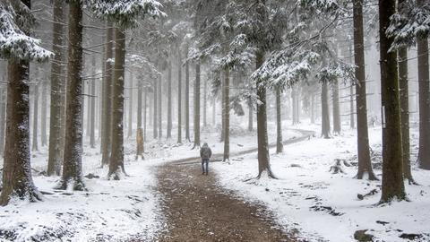 In den Höhenlagen des Taunus sind seit den frühen Morgenstunden einige wenige Zentimeter Schnee gefallen.