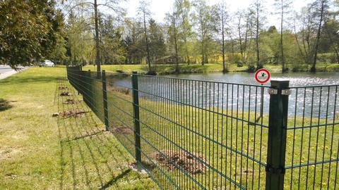 Ein Zaun umrandet in Teilen das Rasenufer eines Dorfteichs in Neukirchen.