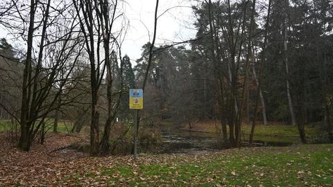 An diesem Teich in Rodgau wurde die tote Frau gefunden.