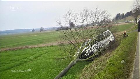 Der Kleinbus des NPD-Politikers krachte gegen einen Baum.