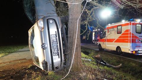 Das Auto lehnt gekippt an einem Baum.