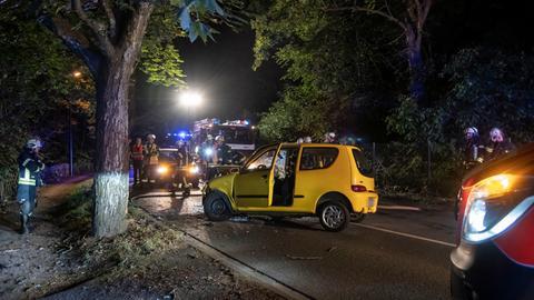Unfall Kronberg Baum