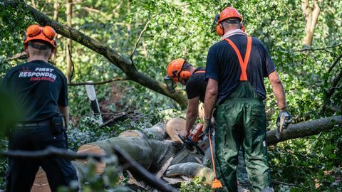 Drei Arbeiter beim Aufräumen bei umgestürzten Bäumen in Langen