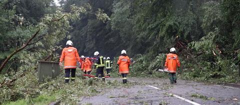 Feuerwehrleute zersägen einen umgestürzten Baum.