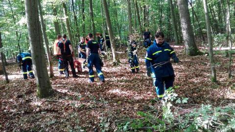 Einsatzkräfte des THW im Wald.