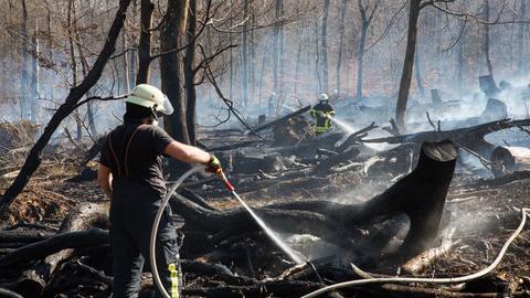 Feuerwehrleute bekämpfen die Flammen.