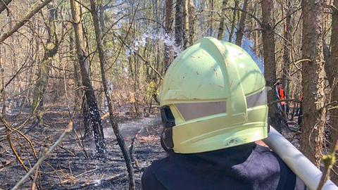 Ein Feuerwehrmann bei Löscharbeiten in einem Wald