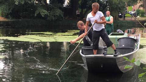 Fischer legen Netze aus, um Walli zu fangen
