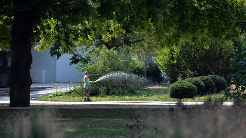 Mann gießt Blumen im Hochsommer mit Schlauch