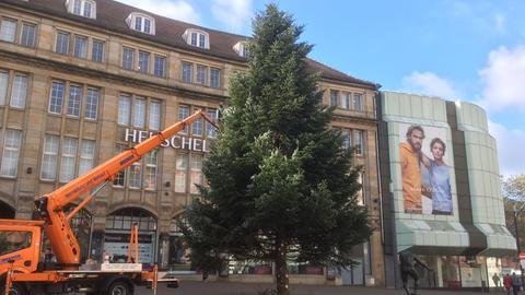 Weihnachtsbaum in Darmstadt