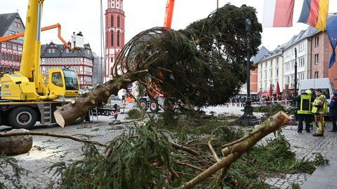 Weihnachtsbaum Frankfurt