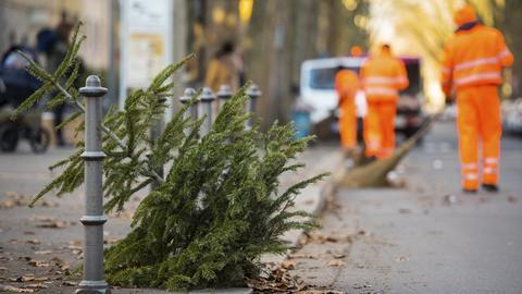 Ein ausrangierter Weihnachtsbaum liegt zur Abholung bereit.