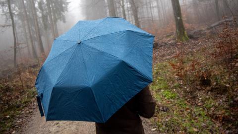 Mensch mit Regenschirm im Wald