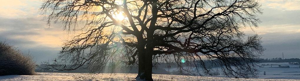 Das Wetter Morgen In Gießen