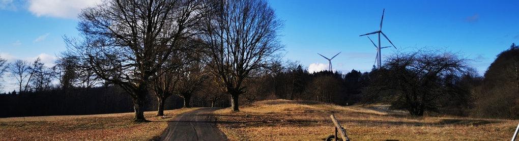 Blauer Himmel - Bäume - ein Weg - im Hintergrund Windräder - aufgenommen in Siegbach-Tringenstein