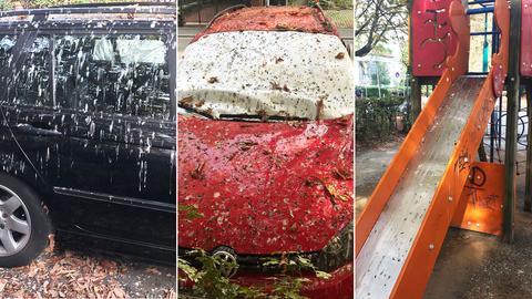 Bildcollage aus drei Fotos, die mit Taubendreck verschmutze Autos und Spielplatzgeräte zeigen