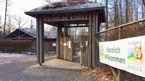 Wildpark Knüll