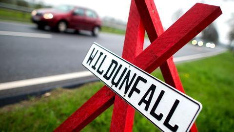 """Ein Schild mit der Aufschrift """"Wildunfall"""" steht am Straßenrand."""