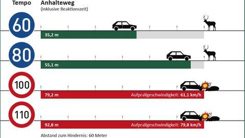 Grafik über Bremswege von Autos bei verschiedenen Geschwindigkeiten bei Hirsch-Sichtung