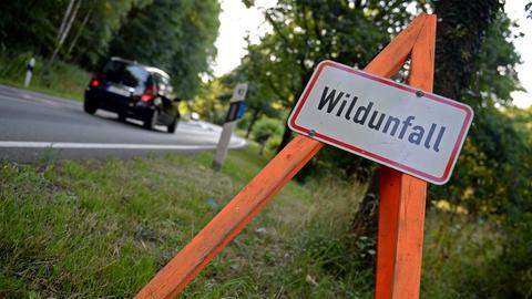 Wildunfall Warnschild