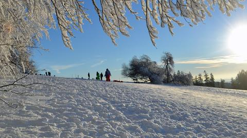 Winterbild vom Hoherodskopf