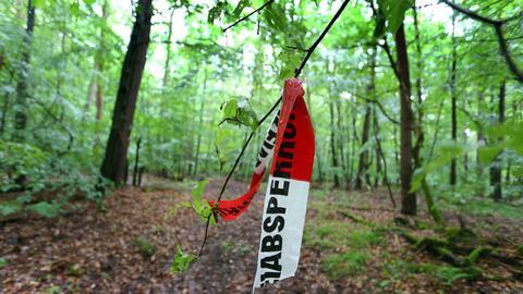 Der entführte Sohn des Schrauben-Milliardärs Würth wurde in einem Wald bei Würzburg unversehrt gefunden.