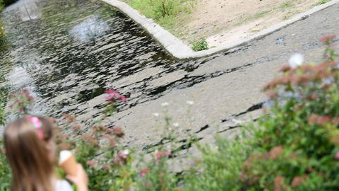 Wassergraben im Frankfurter Zoo