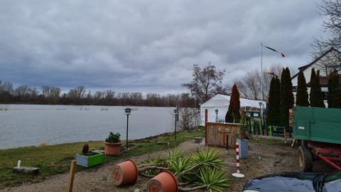 """Das Ausflugslokal """"Zur Rheinfähre"""" ist vom Hochwasser bedroht."""