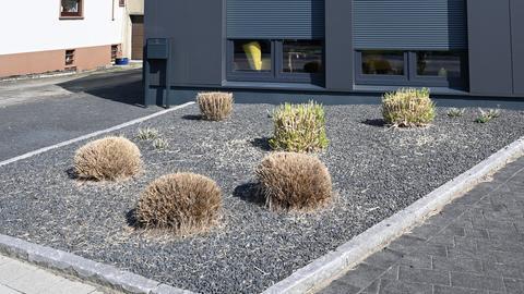 Schottergarten als Vorgarten eines Hauses