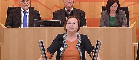 Landtag300120