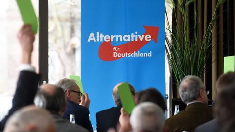 Szene bei einer AfD-Veranstaltung in Kassel 2015
