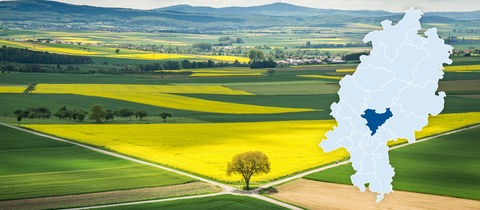 Felder so weit das Auge reicht: Blick von der Burganlage in Münzenberg