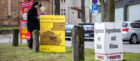 """In Kassel holte die kleine Liste """"Rettet die Bienen"""" laut Trendergebnis einen Sitz."""