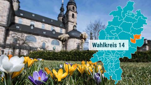 Der Dom in Fulda hinter einer frühlingshaften Wiese.